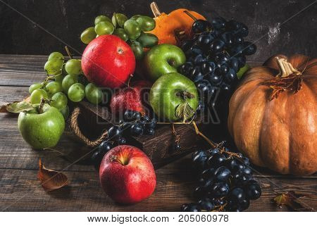 Seasonal Fall Fruits And Pumpkin
