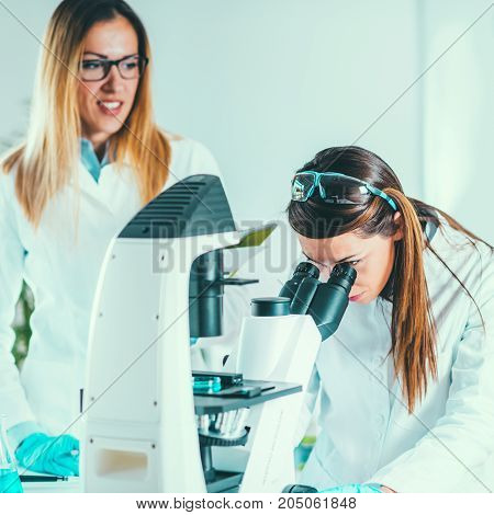 Scientists Working In Their Lab, Toned Image, Two Women