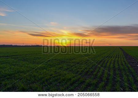 Autumn sunset near Tyulenovo village, Northside Bulgaria.