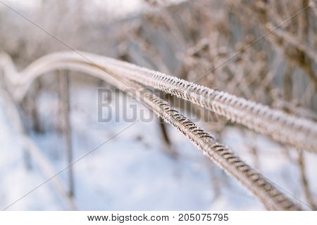 Fence Covered With Frost In Winter.