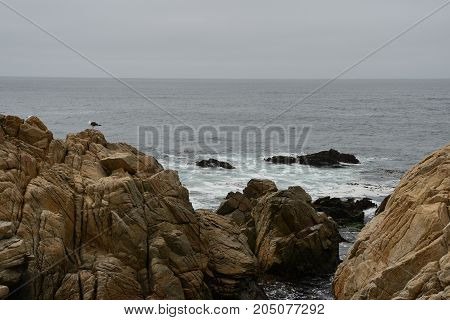 Sea Landscape Along The 17 Mile Drive In Overcast Day
