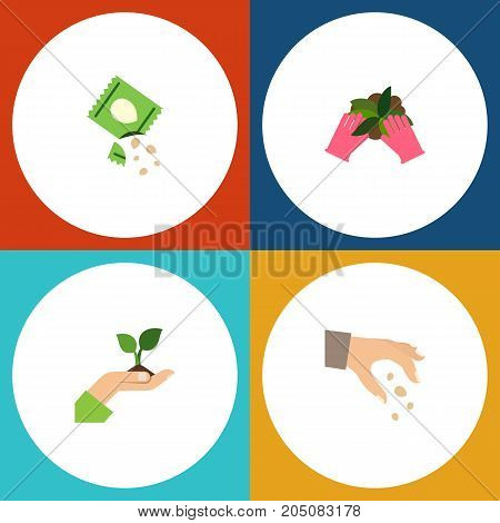 Flat Icon Sow Set Of Packet, Care, Sow And Other Vector Objects