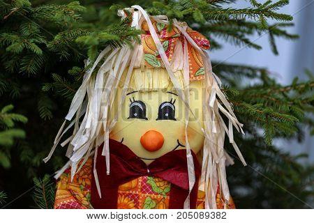 Scarecrow / Close portrait view of scarecrow