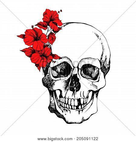 Interesting skull vector with flowers. Painted bright and attractive.