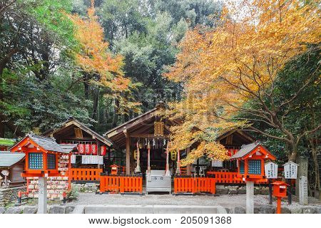 KYOTO JAPAN - NOVEMBER 23 2016 Beautiful temple mind within shrine attracting a large number of visitors annually at Arashiyama in KyotoJapan.