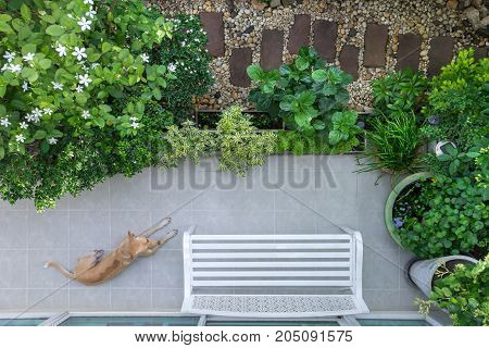 High angle view of the beautiful landscaping and surrounded by nature in the residence which the pet sitting on the balcony.