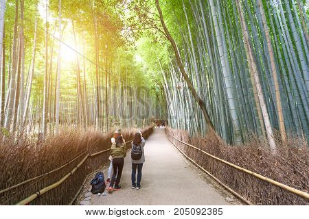 KYOTO JAPAN - NOVEMBER 23 2016 Hipster young girl with backpack enjoying bamboo forest. Tourist traveler on background view mockup. Hiker looking natural in trip in Arashiyama Tokyo Japan country mock up text.