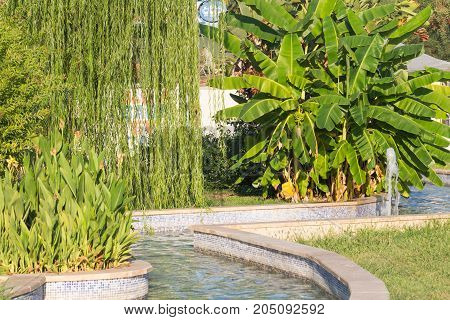 A beautiful Park with fountains, trees, flowers and palm trees in Kemer, Turkey. Green grass Palm Avenue and Fountain