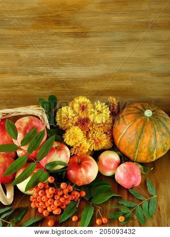 Apples, rowan berries, pumpkin and flowers are lying on a wooden floor. Freshly picked autumn harvest. Copy place