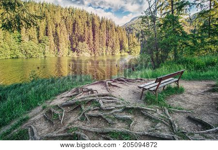 The place for rest. A quiet place for reflection in the park near the lake. Calm concept. Artistic picture. Discover the world of beauty. Scenic landscape. Eastern Europe. Romania. Lake Roshu