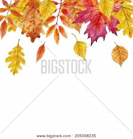 Beautiful frame with watercolor hand drawn autumn leaves