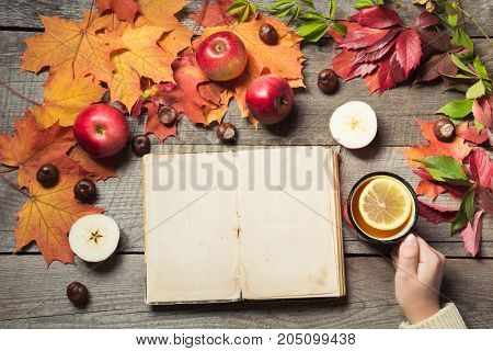 Fall concept. Vintage album with space for text and cup of tea in hand, decor of autumn leaves, apples on wooden board. Autumn still life.