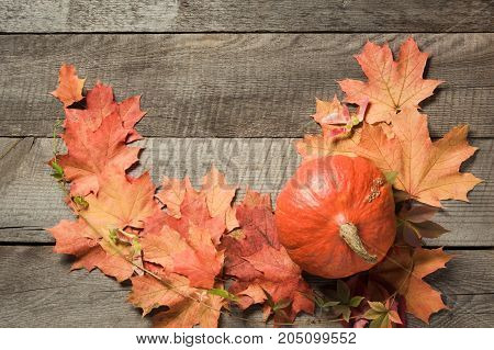 Autumn harvest, pumpkin, colorful autumn leaves on wooden board. Fall still life. Top view.