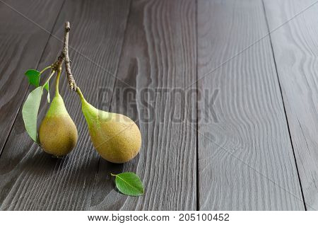 Two pears on dark wooden background. Copy space composition. Selective focus