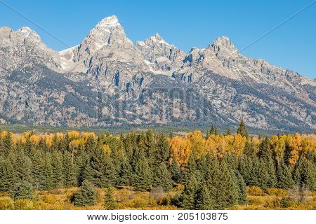 a scenic autumn landscape of the Tetons in Wyoming