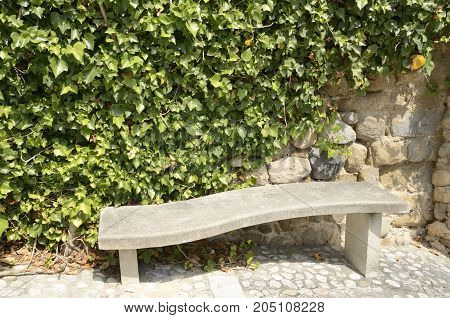 Stone bench next to a wall covered by ivy in Besalu a town in the comarca of Garrotxa in Girona Catalonia Spain.