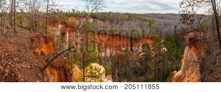 Panoramic aerial view of canyons and thicket in the Providence Canyon State Park in cloudy autumn day Georgia USA