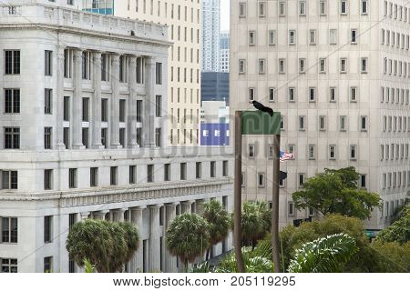 Different style buildings in Miami downtown (Florida).