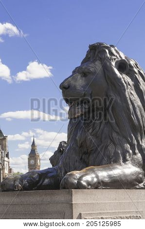 LONDON UK - AUGUST 11 2013; The lion of Trafalgar square and the Big Ben on a sunny summer day in London