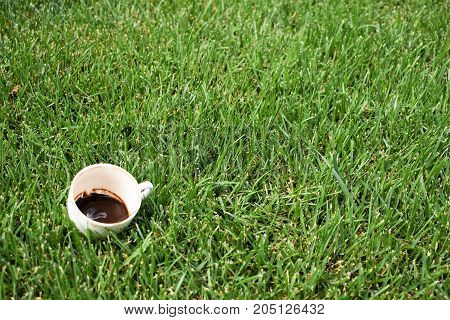 coffee grounds on the bottom of the mug. a cup on the grass. green meadow and white tableware. dirty dish. fortune telling