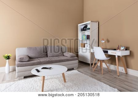 Modern Living Room With Comfortable Couch And Coffee Table