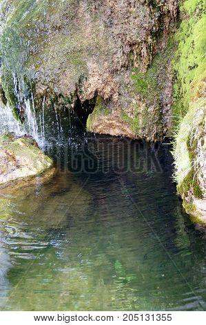 Stone wall with greenery and waterfall, texture of nature. Background for text, banner, label.