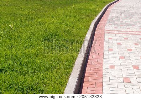 Stone wall with greenery texture of nature. Background for text, banner, label.