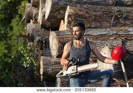 Lumberjack With Chainsaw And Ax On Log Stack