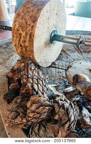 Horse powered stone grinding wheel used in the production of mezcal in Oaxaca Mexico