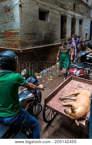 VARANASI INDIA - MARCH 13 2016: Vertical picture of indian people trying to move and a motorcylce in a narrow dirty street of Varanasi in India