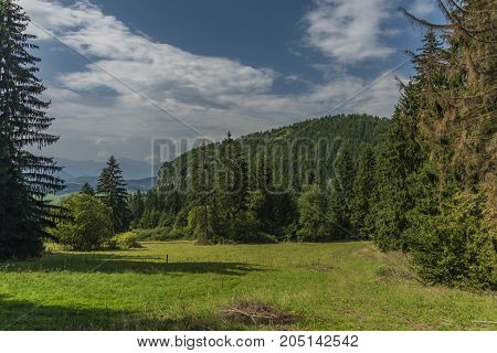 Forests under Velky Choc hill in north Slovakia in summer sunny day