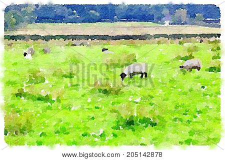 Digital watercolor painting of woolly sheep grazing in a field on a cloudy day in the UK with trees in the background and space for text.