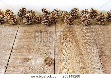 Rustic Wood Planks And A Line Of Pinecones With White Background