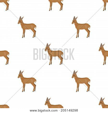 A young, wild antelope. A wild-footed animal of an antelope single icon in cartoon style vector symbol stock illustration .