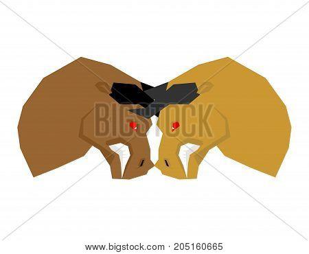 Battle bull. bullfight. Two bulls to butt. Vector illustration
