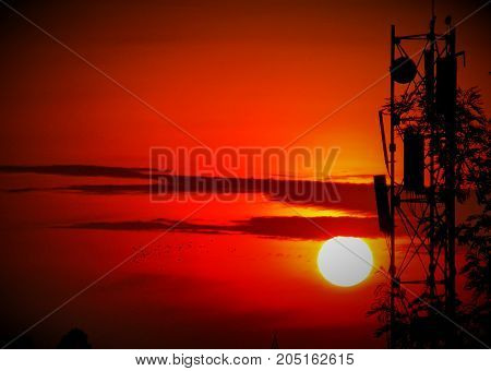 sun rise with telecom tower in front birds flying fusion of nature and technology