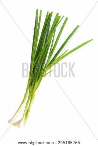 Bunch of green leek on white background
