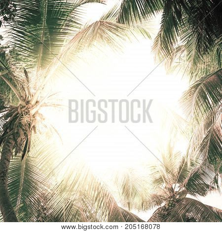 Tropical frame pattern with palm trees in sunlight. For Holiday travel design. Pastel toned