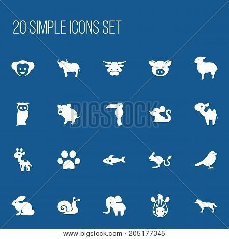 Set Of 20 Editable Zoology Icons. Includes Symbols Such As Horse, Dog, Giraffe And More