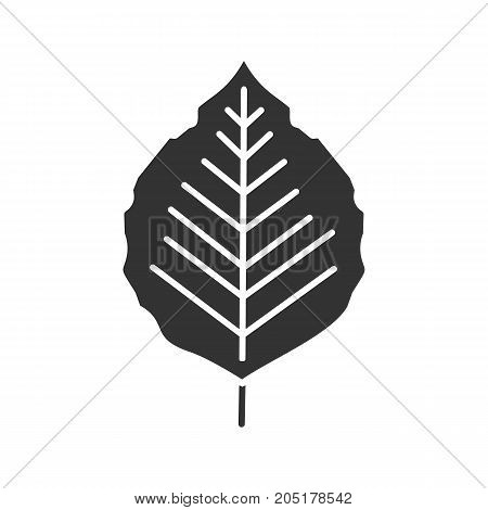 Poplar leaf glyph icon. Silhouette symbol. Negative space. Vector isolated illustration