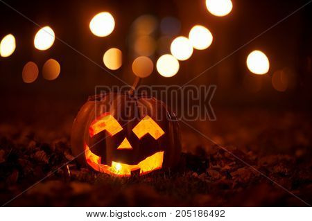 Kind Halloween Pumpkin in the park at night