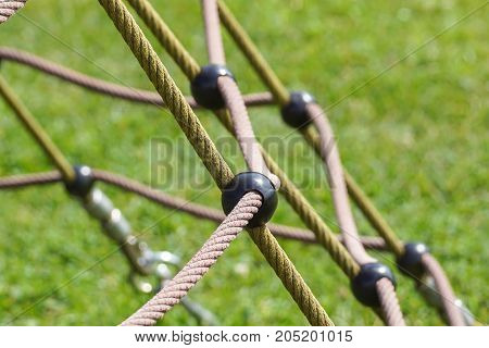 detail of crossed red ropes in green back .