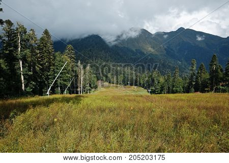 Early autumn mountain forest landscape with cloudy sky, north Caucasus