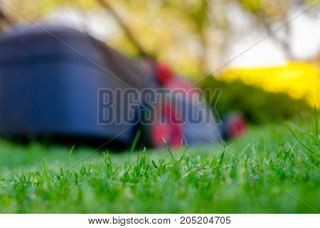 lawn mower mows a grass on a lawn care of a lawn