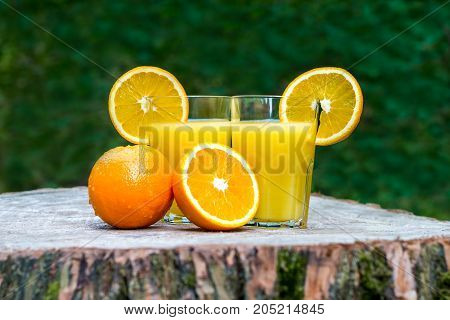 The two glasses of fresh orange juice with oranges fruit on a wooden stump outdoors. Green background