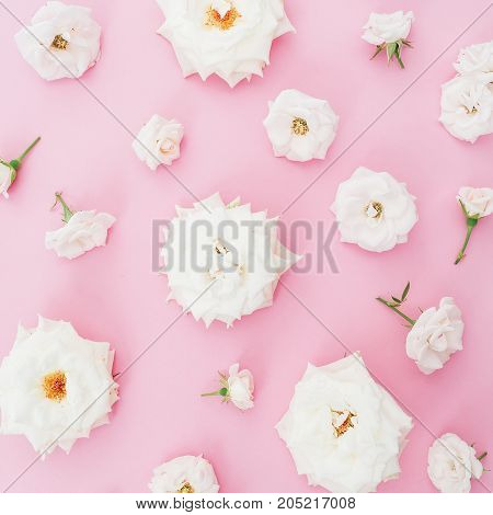 Floral pattern of white roses flowers isolated on pink background. Flat lay, top view.