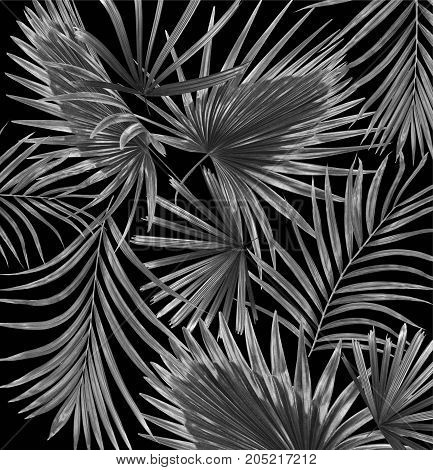 mix black leaves of palm tree background