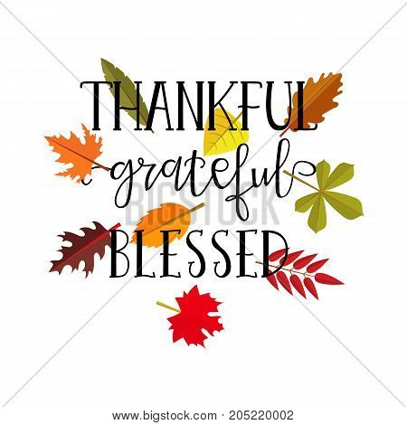 Thankful grateful blessed simple lettering. Calligraphy postcard or poster graphic design lettering element. Hand written style design Thanksgiving day sign