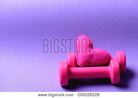 Dumbbells Made Of Pink Plastic Near Soft Toy Heart