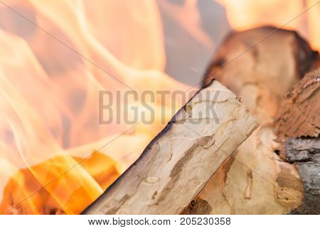 fire wood . Photo as an abstract background